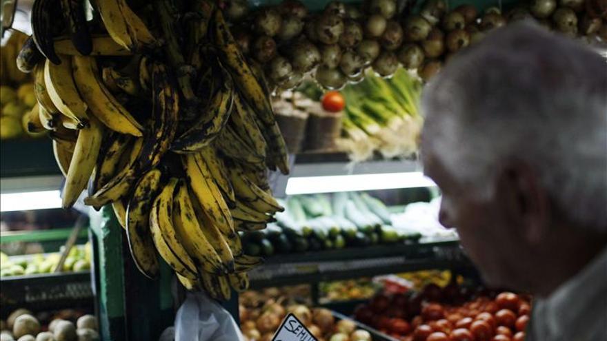 Expertos mundiales analizarán en Costa Rica situación y retos sector bananero