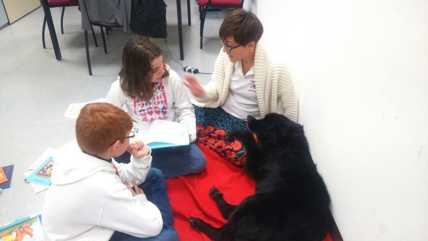 La actividad de la protectora de animales 4 Patas Jumilla 'Perros y letras'