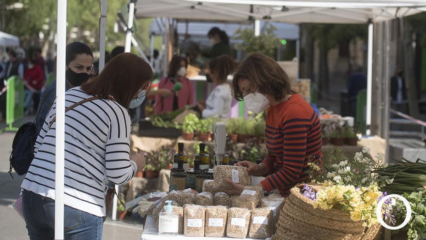Sabores, olores y colores de la tierra al Ecomercado de Córdoba
