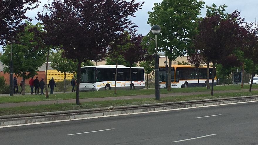 Autobuses urbanos en los alrededores del pabellón.