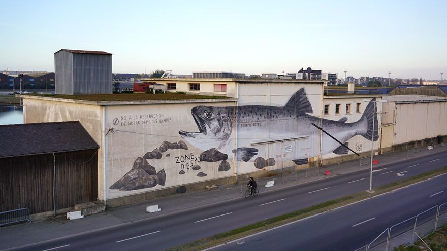 SAUMON SAUVAGE / Bretagne, France