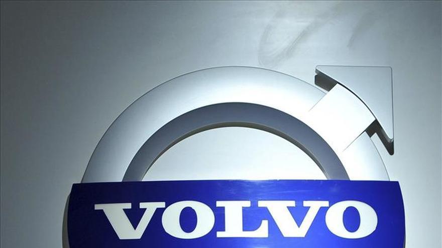 Volvo desarrolla un sistema de detección de canguros para evitar colisiones