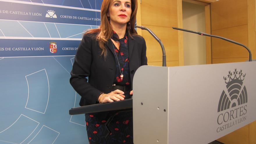Silvia Clemente atiende a los medios en las Cortes