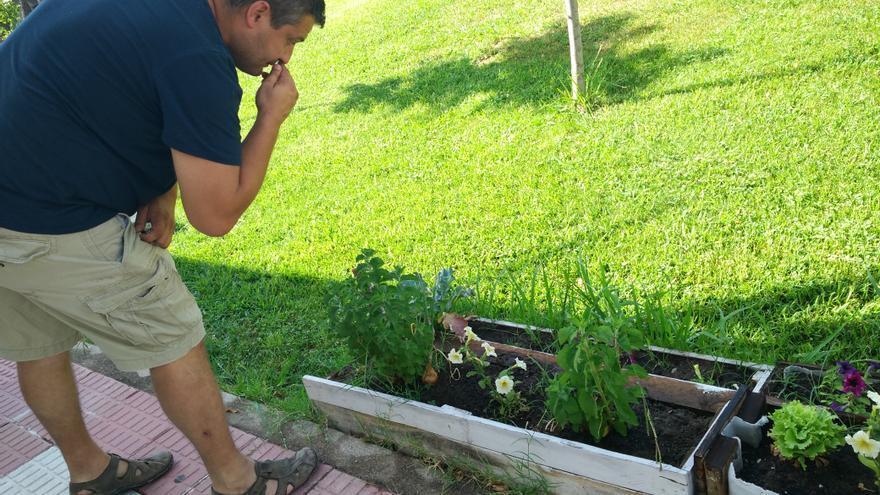 Alberto Cañedo ante uno de los huertos comestibles plantados junto al Ayuntamiento
