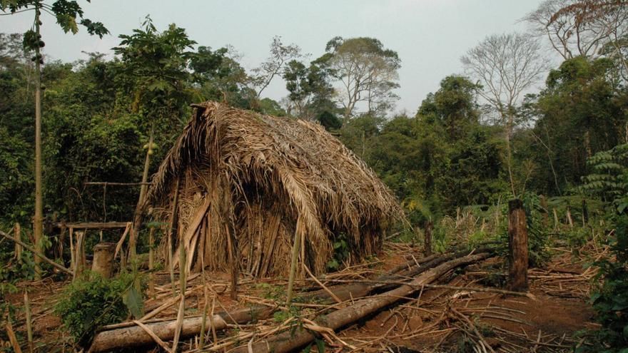 La cabaña del Indio del agujero en el estado de Rondonia.