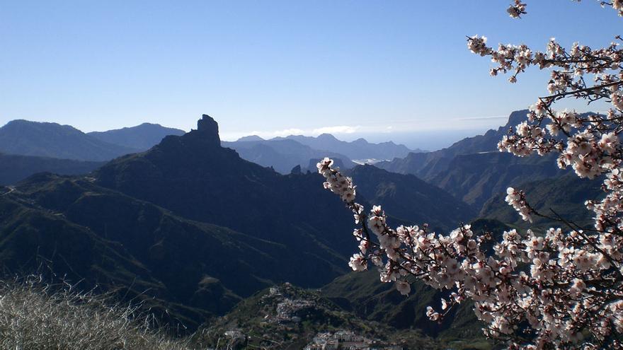 Panorámica del paisaje de Tejeda con almendros en flor (NATALIA RAMOS)
