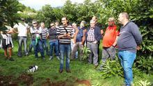 ASPA apuesta por la formación y la organización en el cultivo de aguacates