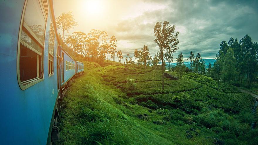 Tren y campos de té en Sri Lanka