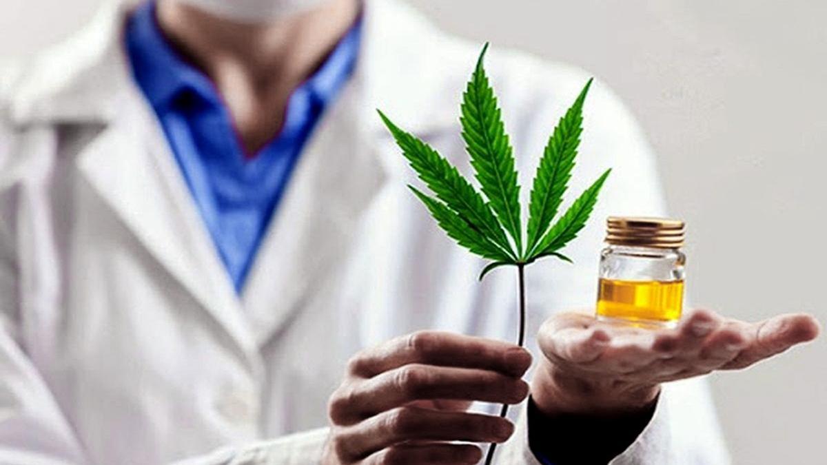 Un nuevo curso de posgrado cuyo objetivo es continuar la investigación de la planta de cannabis.