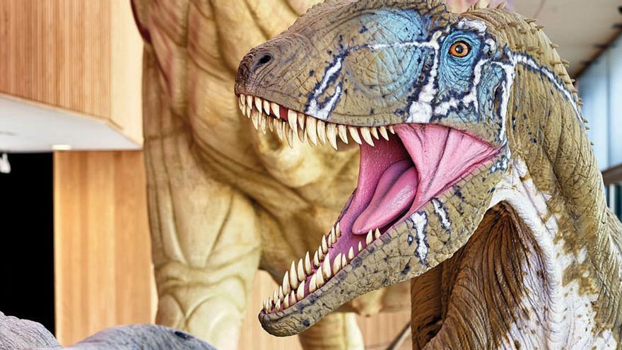 El dinosaurio Pepito en el Museo Paleontológico de Cuenca