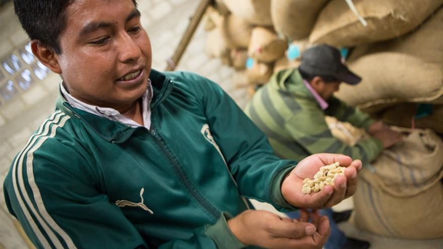 Productores de café de la cooperativa Palu'chen, de Guaquitepec, Chiapas.