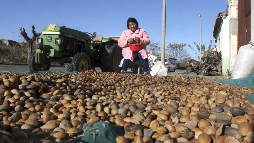 La inmigración rejuvenece la España rural: el 16 % ya es población extranjera