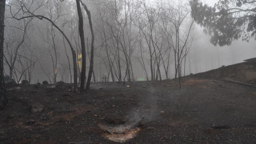 Incendio de la cumbre de Gran Canaria en la tarde de este jueves