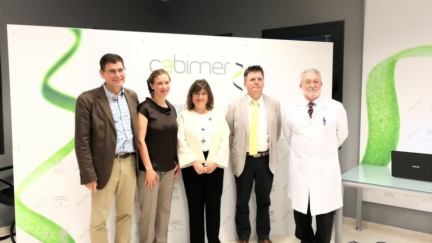 Investigadores andaluces lideran un proyecto que desarrolla el primer fármaco con potencial de curar la diabetes tipo 1