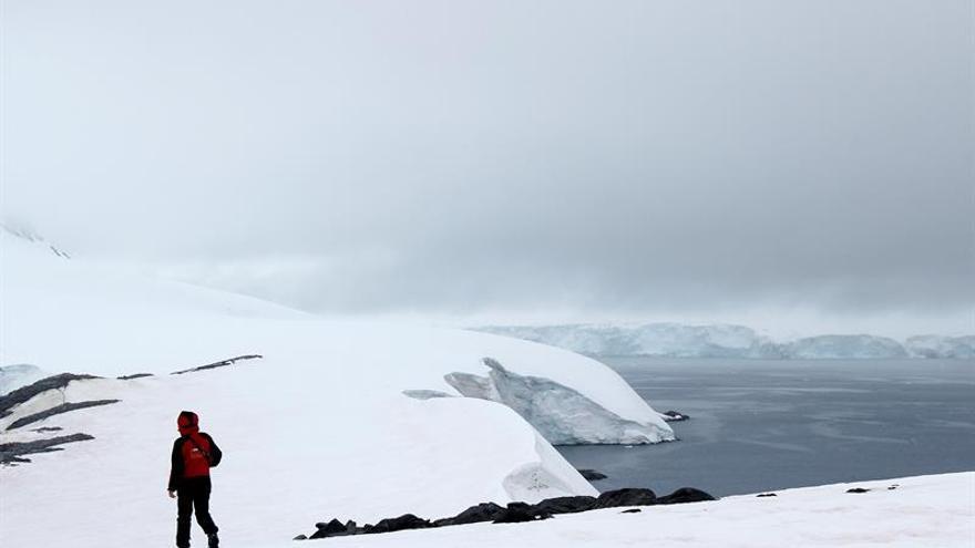 El cambio climático podría dejar un cuarto de la Antártida sin hielo en 2100