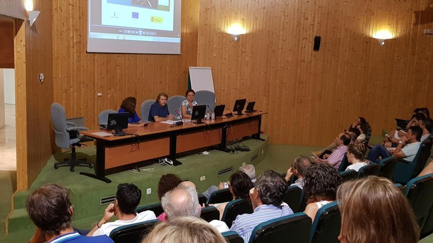 El director provincial de Economía, Empresas y Empleo, Agustín Espinosa, ha presentado los estudios