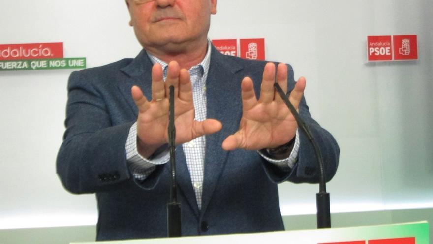 """PSOE-A espera """"poner su granito de arena"""" en las elecciones generales para """"llevar a La Moncloa"""" a Pedro Sánchez"""