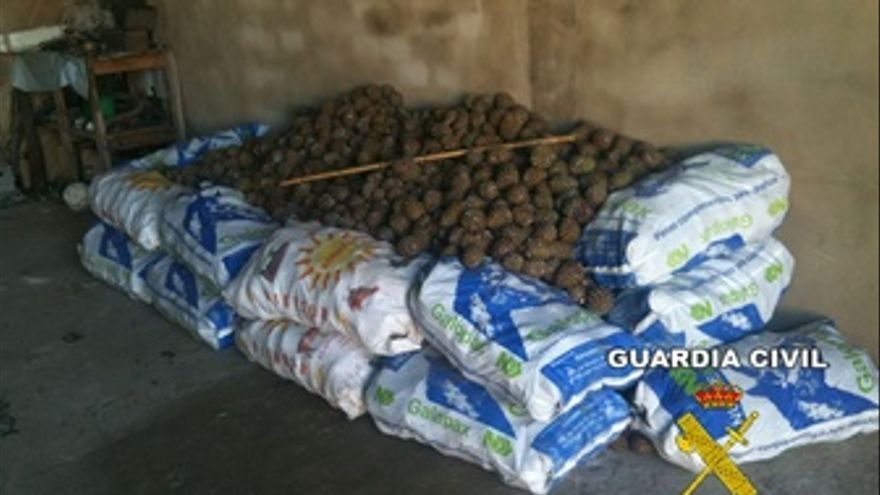 La Guardia Civil Incauta Un Total De 4.500 Kilos De Piñas.