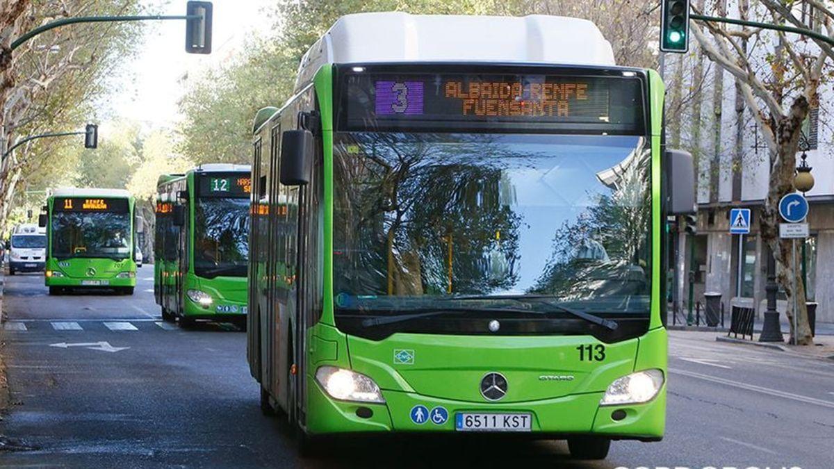 Autobuses de Aucorsa en Córdoba.