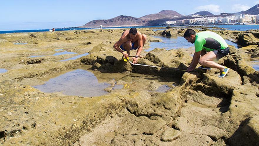 Trabajos arqueológicos realizados en La Barra de Las Canteras