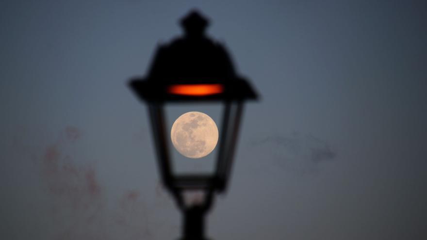 La superluna palmera a través de una farola.