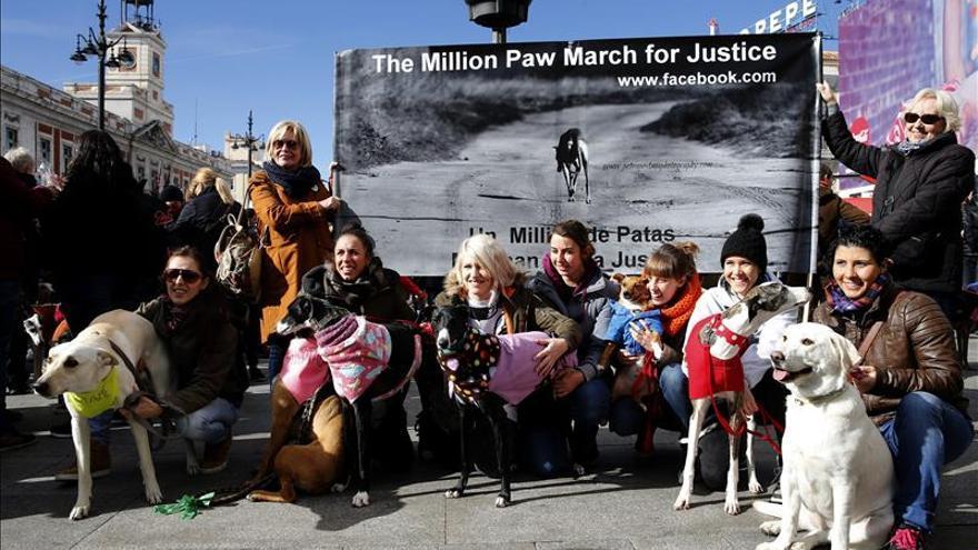 Cientos de personas y sus galgos se concentran para pedir el fin de la caza con perros