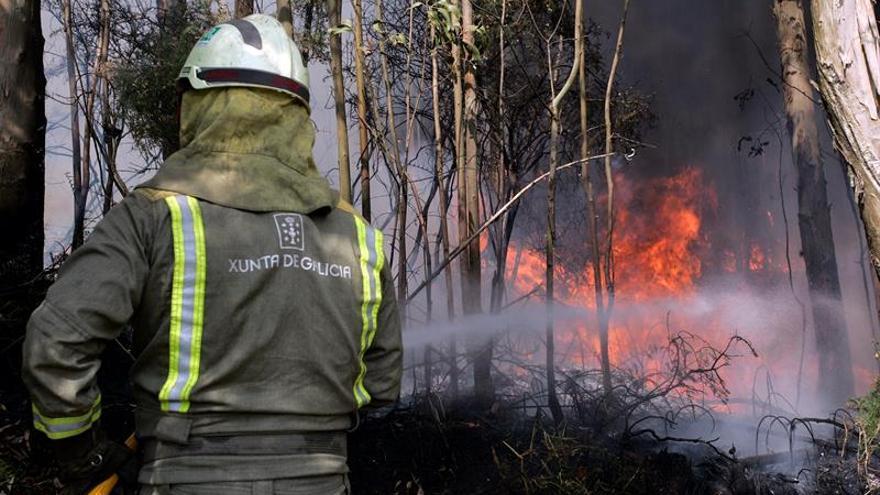 Detenido en Sardiñeiro (A Coruña) por provocar incendios desde agosto de 2016