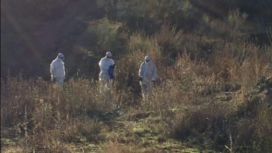 Operarios de la CHT en el arroyo Ramabujas de Toledo