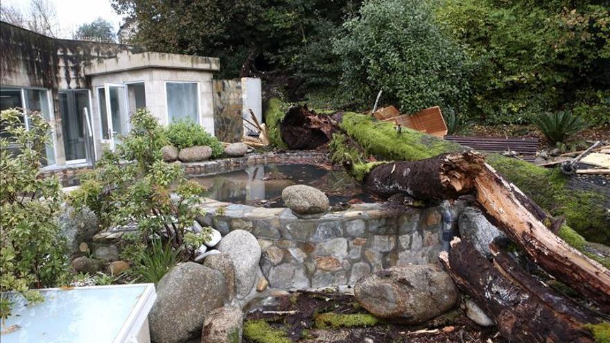 Hospitalizado un niño tras caer un árbol del jardín del Balneario de Mondariz