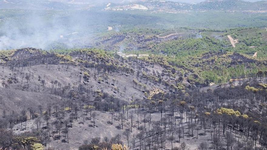 La Junta asegura que el incendio de Riotinto estará controlado en unas horas