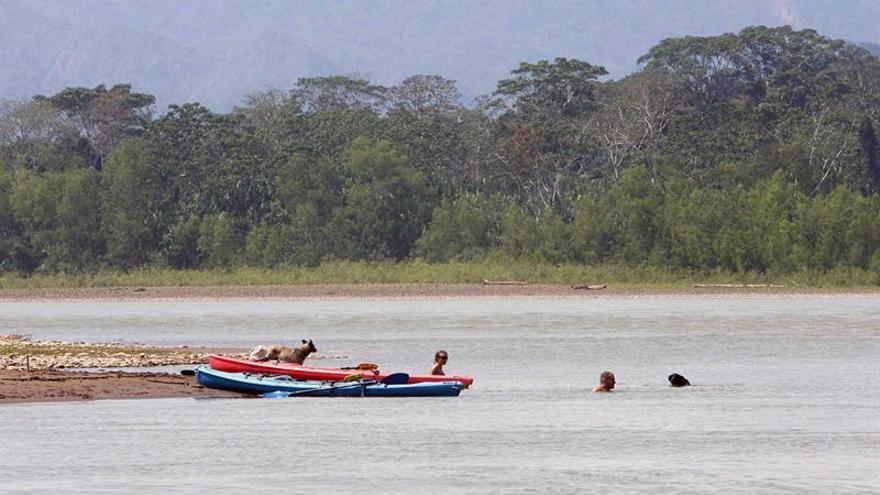 Empresa china construye una carretera en la Amazonía boliviana