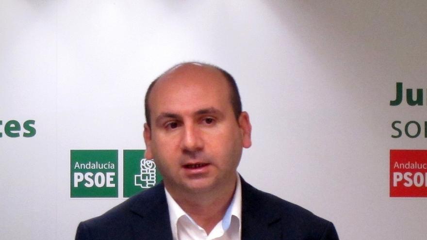 PSOE-A se sumará mañana a las concentraciones convocadas por organizaciones sociales en contra de la reforma local