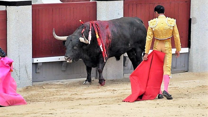 Plaza de toros de Las Ventas (Madrid)