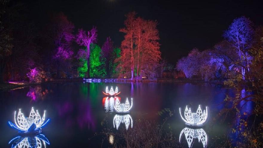 Navidad en el Jardín Botánico de Madrid. CSIC