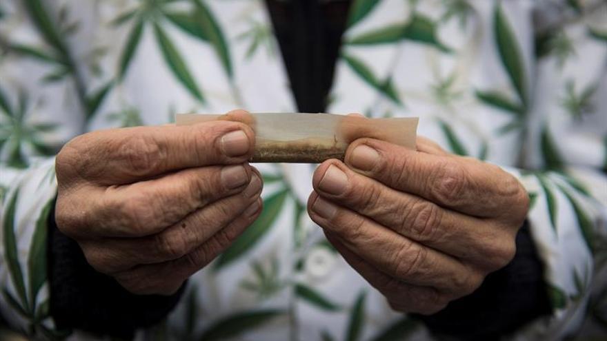 La ONU insta a España y a otros países a controlar el cannabis medicinal