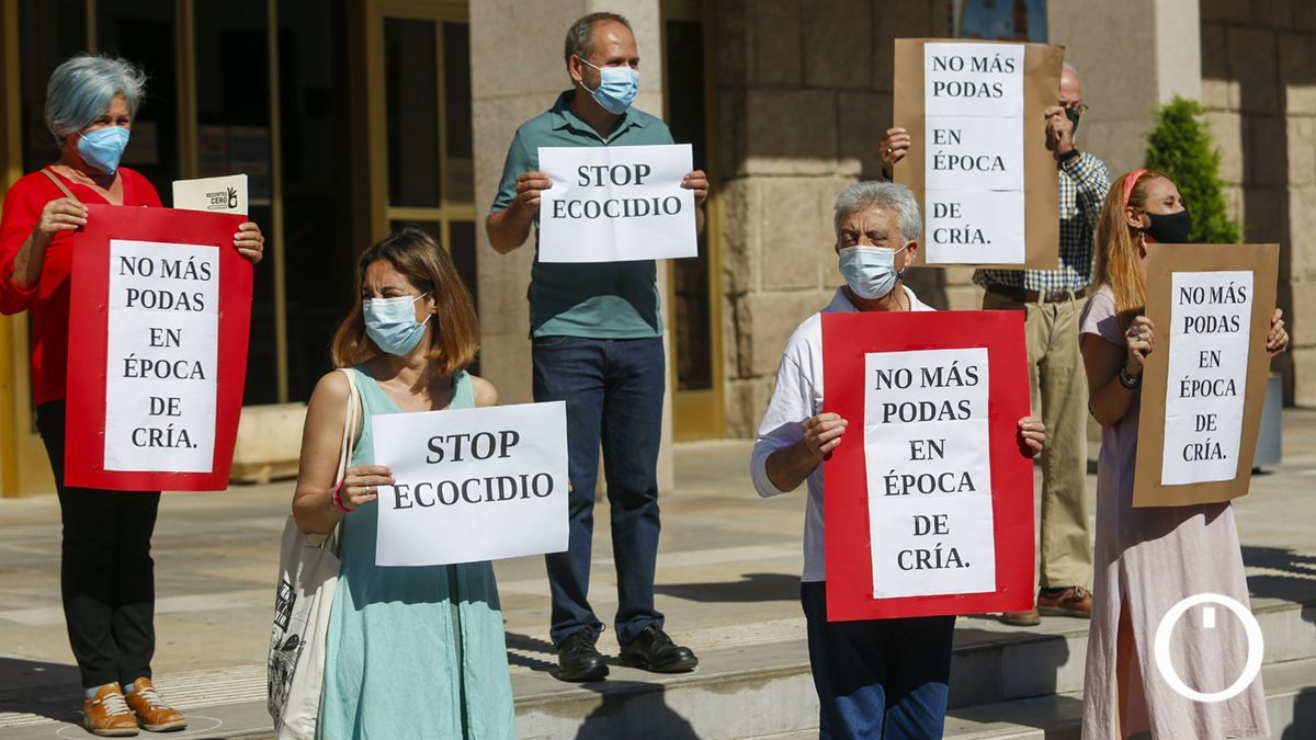 Protesta por la poda de árboles en época de cría