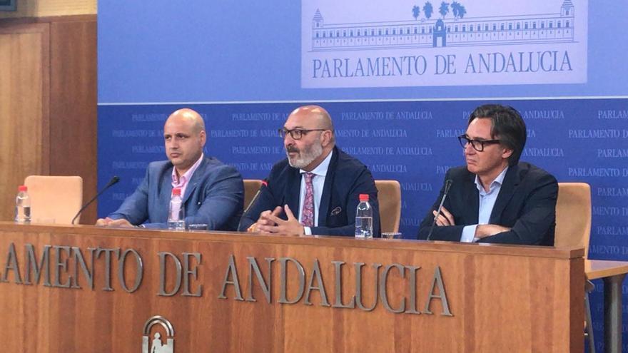 Los diputados andaluces de Vox Alejandro Hernández, Rodrigo Alonso y Manuel Gavira.