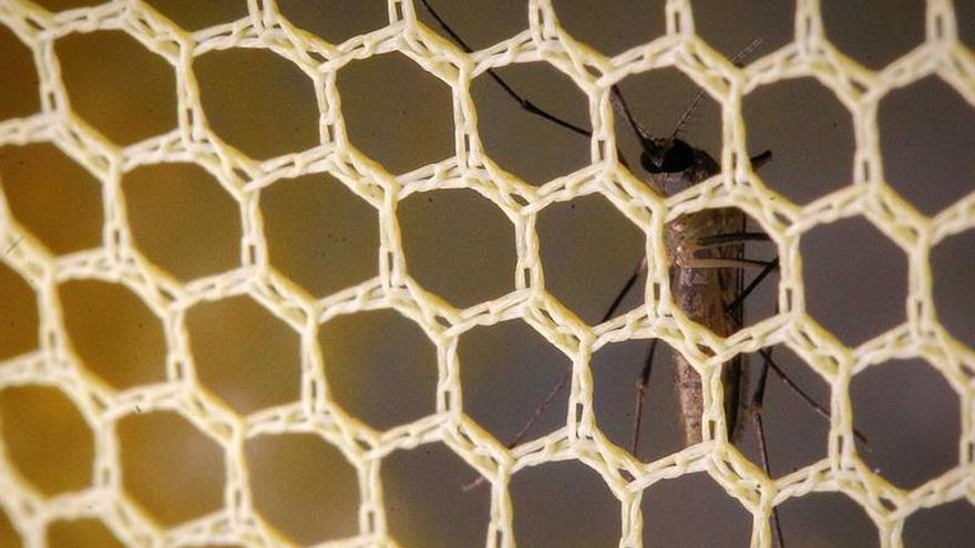 Cuba registra su primer caso autóctono del virus del Zika