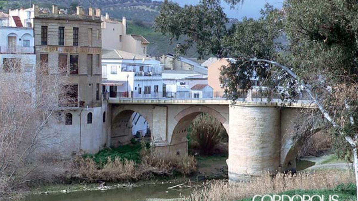 Imagen de Puente Genil.