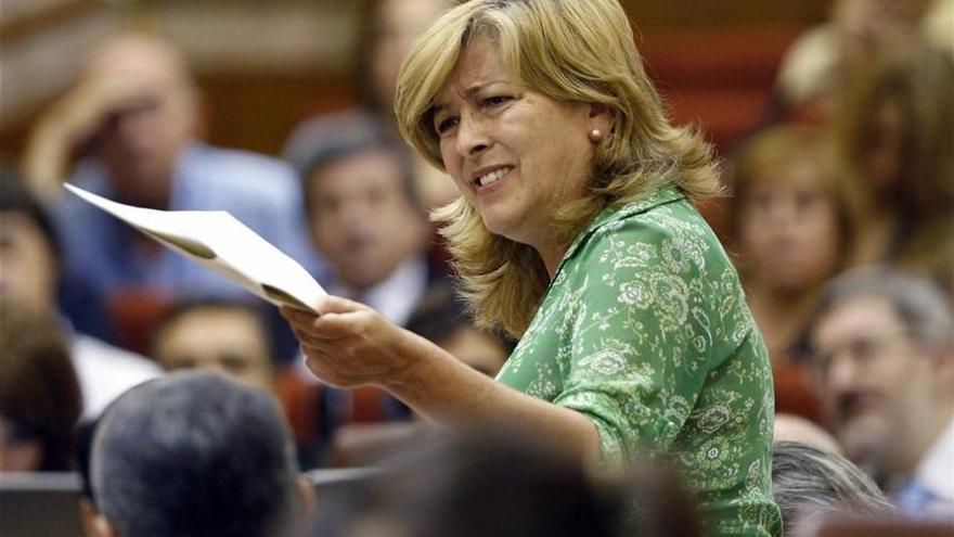Concha Caballero, ex portavoz de IU en el Parlamento andaluz, falleció en 2015.
