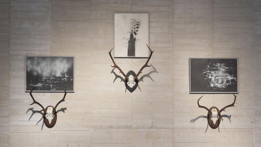 Vista de la exposición en el MUSAC de Dario Corbeira