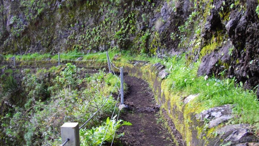 En la imagen, un tramo del sendero Barranco deLa Madera-Santuario de Las Nieves
