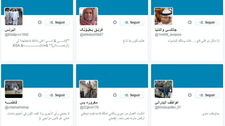 Los últimos seguidores del presidente son del mundo árabe y apenas tienen 'followers'.