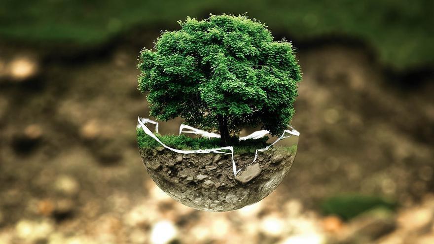 """La cultura ecológica avanza de manera """"lenta y desigual"""" en la Unión Europea"""