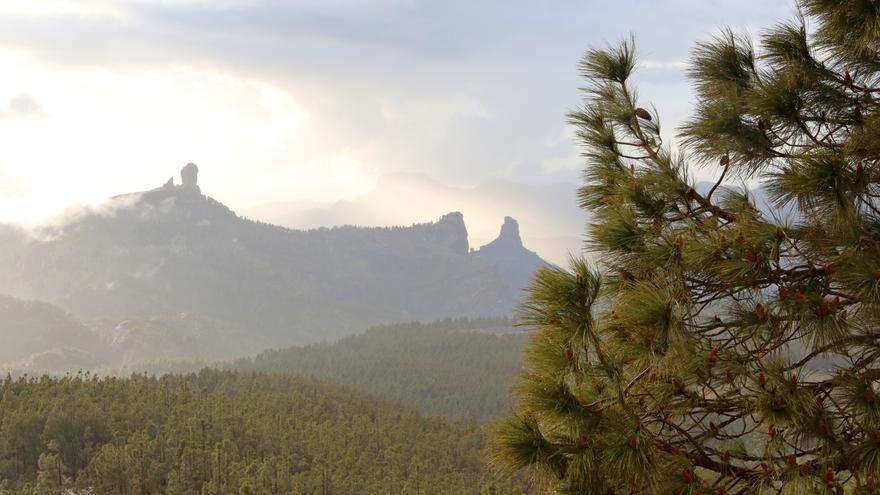 Roque Nublo y Bentayga desde el Pico de Las Nieves