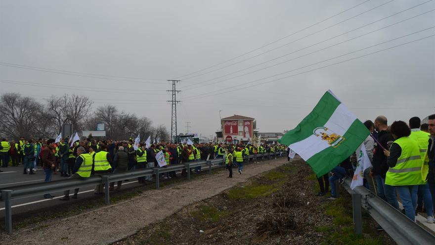 Manifestaciones de olivareros en Jaén.