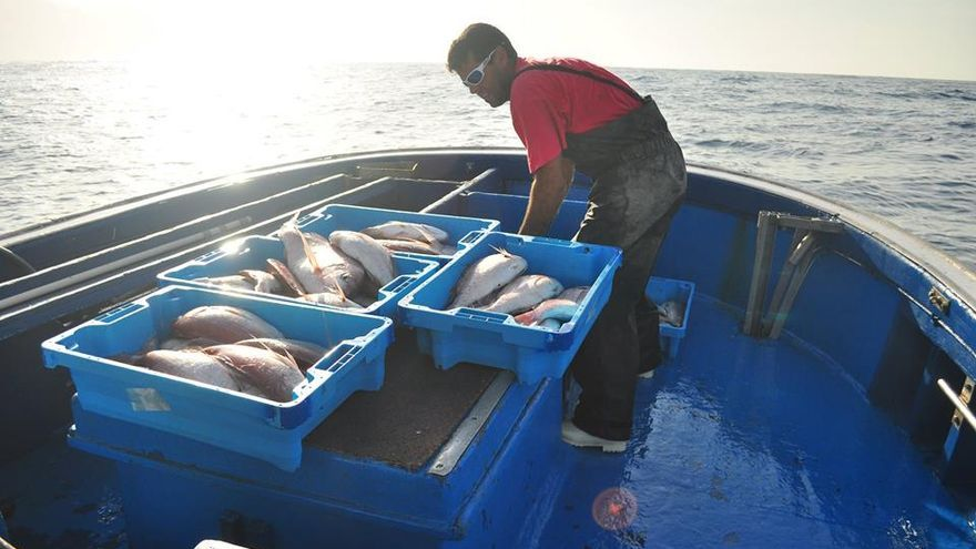 Canarias solicita a Europa un método de evaluación diferenciado para su flota pesquera