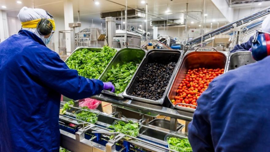 Trabajadores de una planta de Citrus