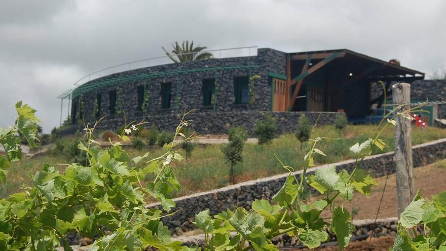 Vista general de la instalación para vinificación de la marca 'Canary Wine', en el municipio de Tacoronte