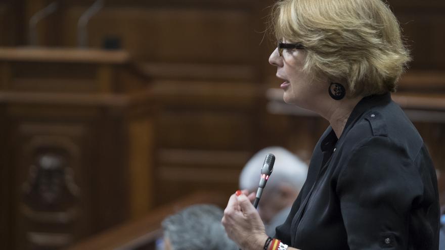 La diputada del PP, Josefa Luzardo